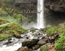 Wilde Northwest