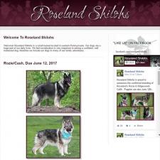 web-roseland-2017