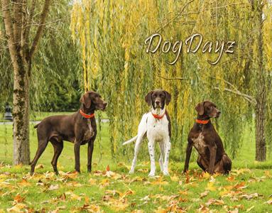 2017 Dog Dayz